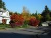 Neighborhood Scene 3 at Applewood Estates