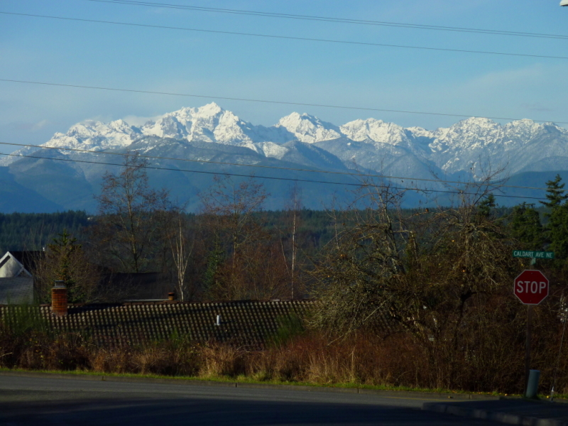 View of Olympic mountains from Austurbruin Park, Poulsbo