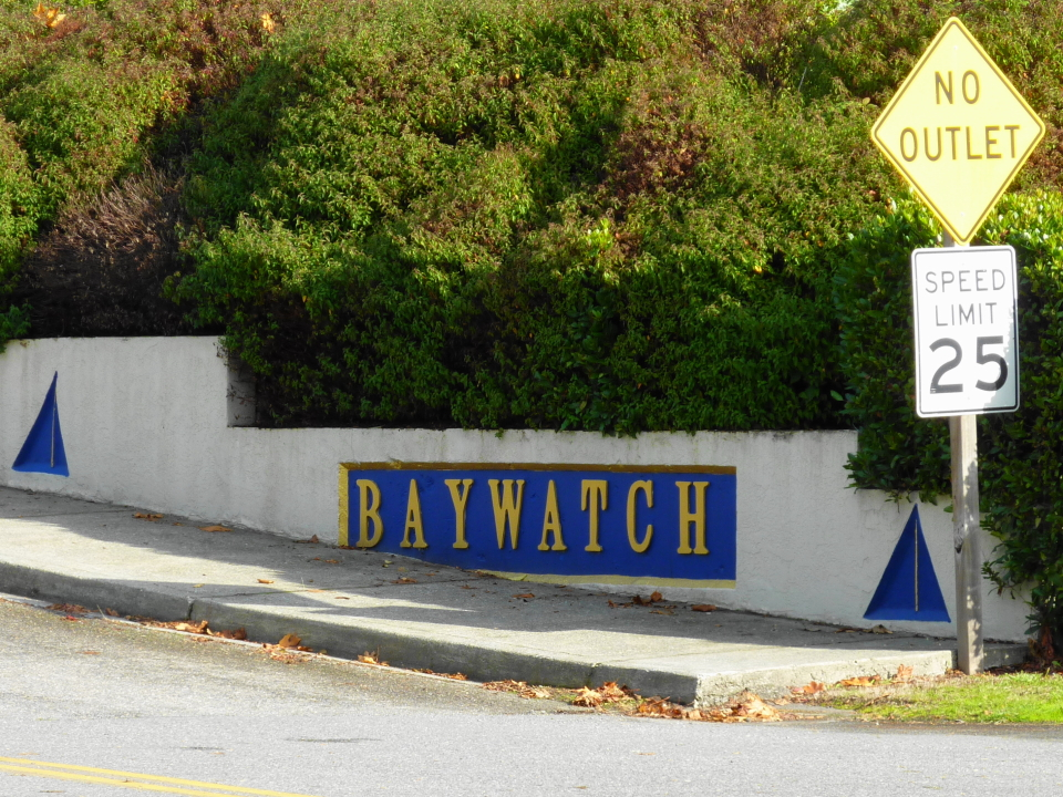 Baywatch Entry from State Hwy 305