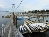 View of the gang-planck, kayak sales & rentals and boat slips, Boston Harbor Marina