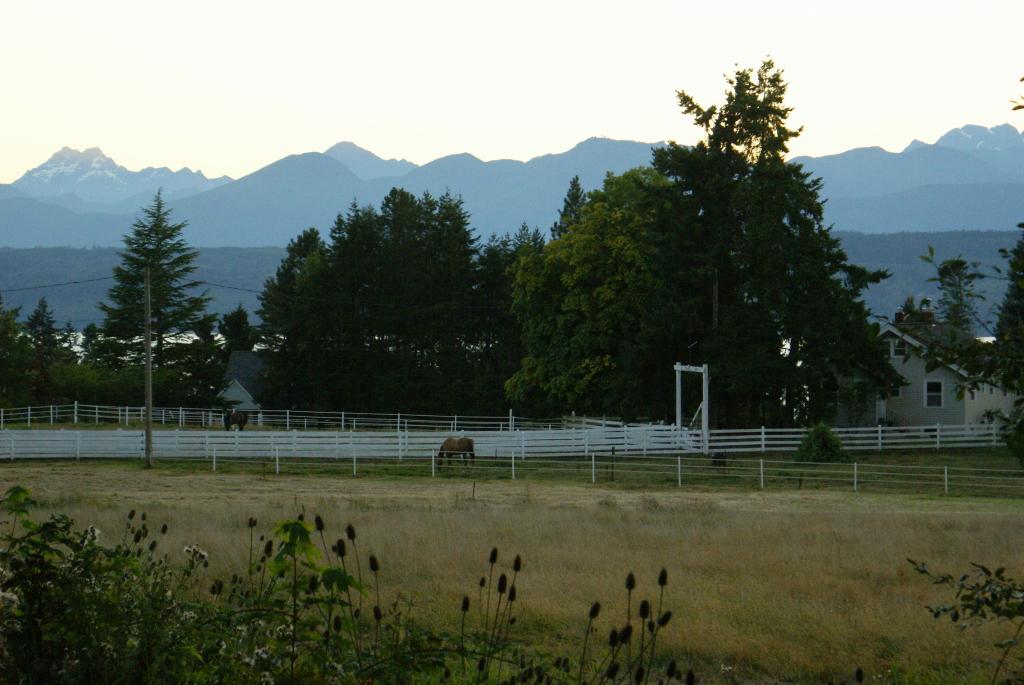 Rural Lofall equestrian areas