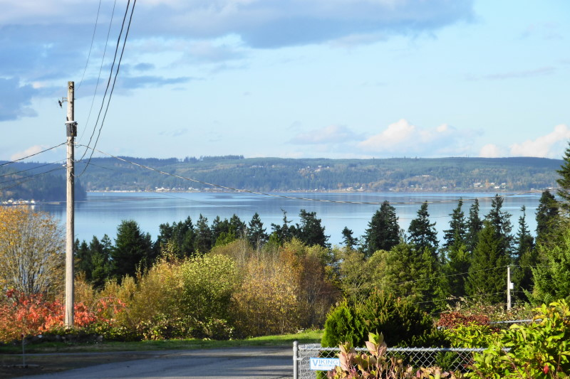 Hood Canal view
