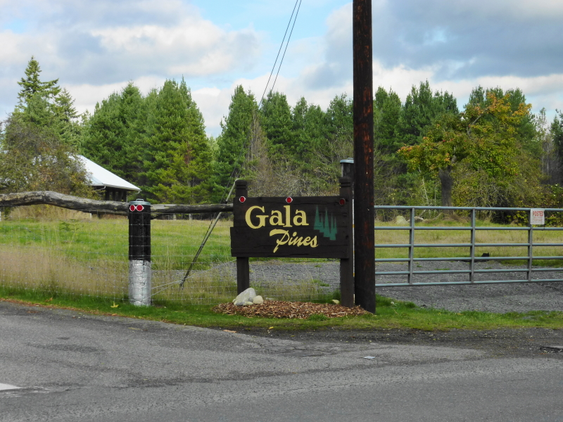 Entry marker to the Gala Pines Neighborhood off Lincoln Road