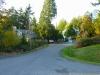 Street view in Miller Bay Estates