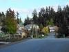 Woods & Meadows neighborhood looking East